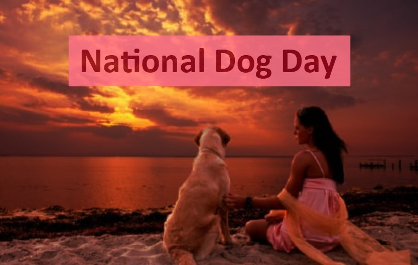 Happy National Dog Day Quotes, Picture, Greetings Card, Image, Wishes & SMS