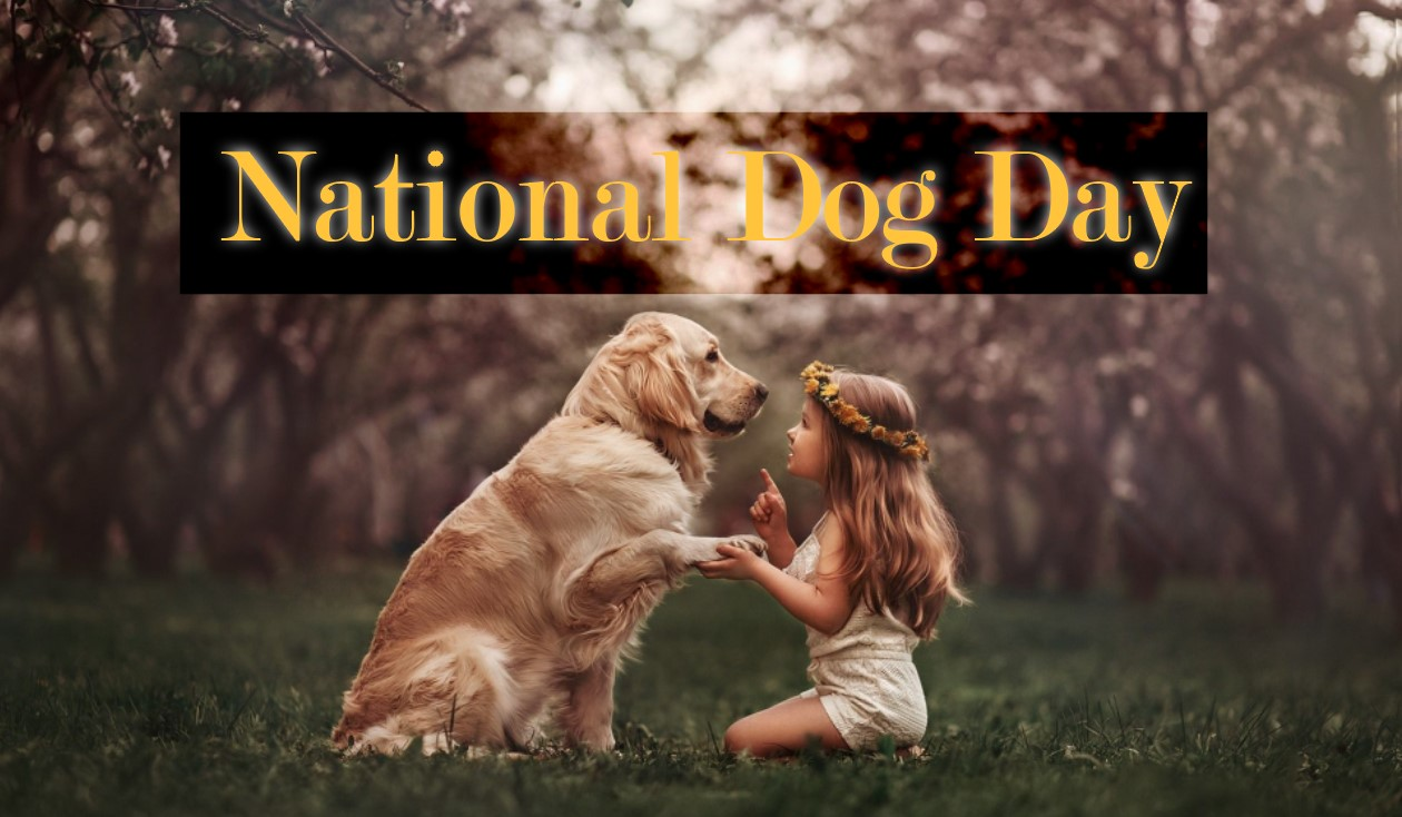Happy Dog Day 2021 - Best Quotes, Picture, Greetings Card, Image, Wishes & SMS