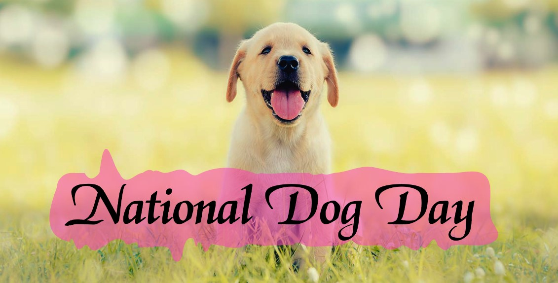National Dog Day 2021 - Best Quotes, Picture, Greetings Card, Image, Wishes & SMS