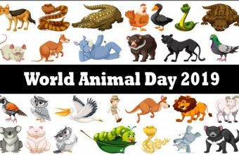 World Animal Day – Happy Animal Day 2019 – World Animal Day 2019 Quotes, Facts, Gifts, Activities, Articles, Theme